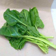 Bouquet de blettes liscia verde (300g)